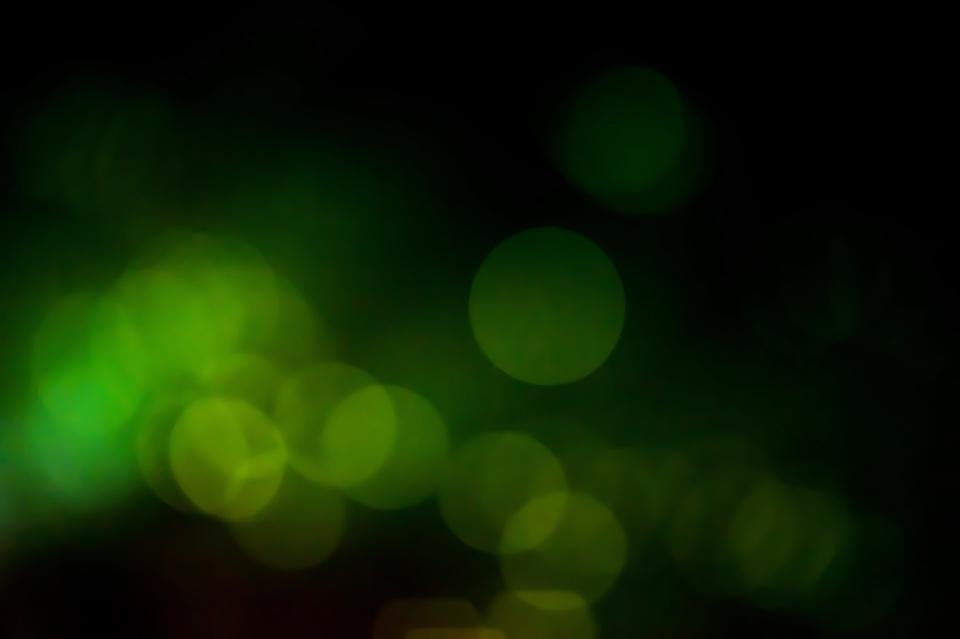 DSC_9943_2.jpg
